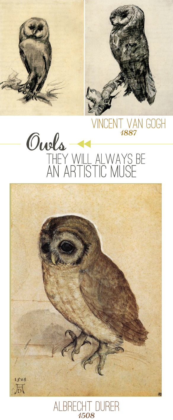 Owl-Artwork-Beautiful-Hello-Blog2