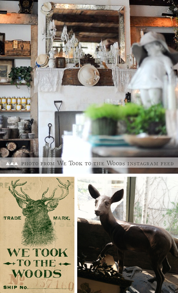 We Took To The Woods, Greenville, SC on Beautiful Hello Blog